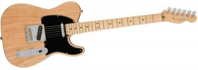 Fender American Professional Telecaster Ash MN - NT