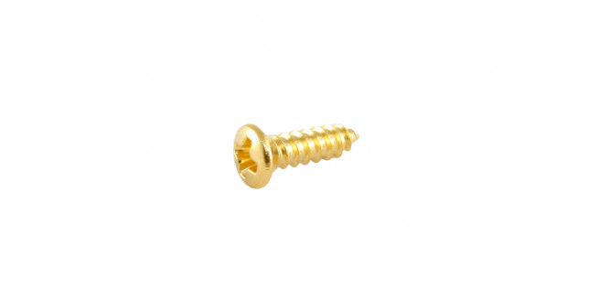 Allparts Gibson® Size Pickguard Screws - GH