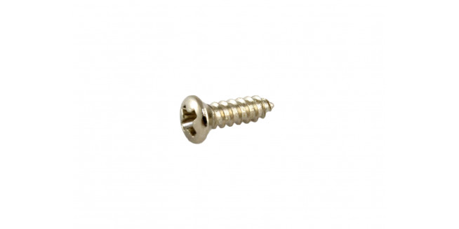 Allparts Gibson® Size Pickguard Screws - NH