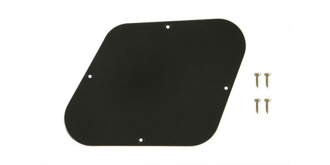 Gibson Les Paul Control Plate